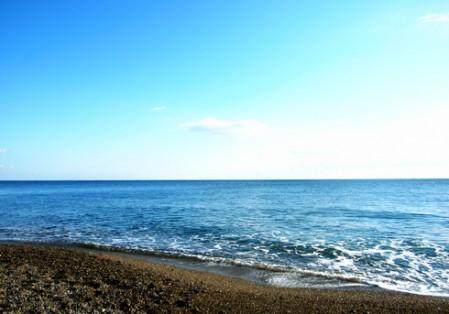 伊良湖岬の海岸