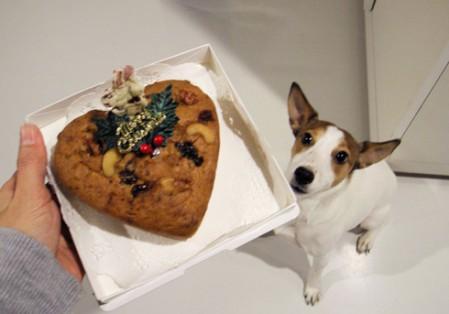 ケーキだっ!